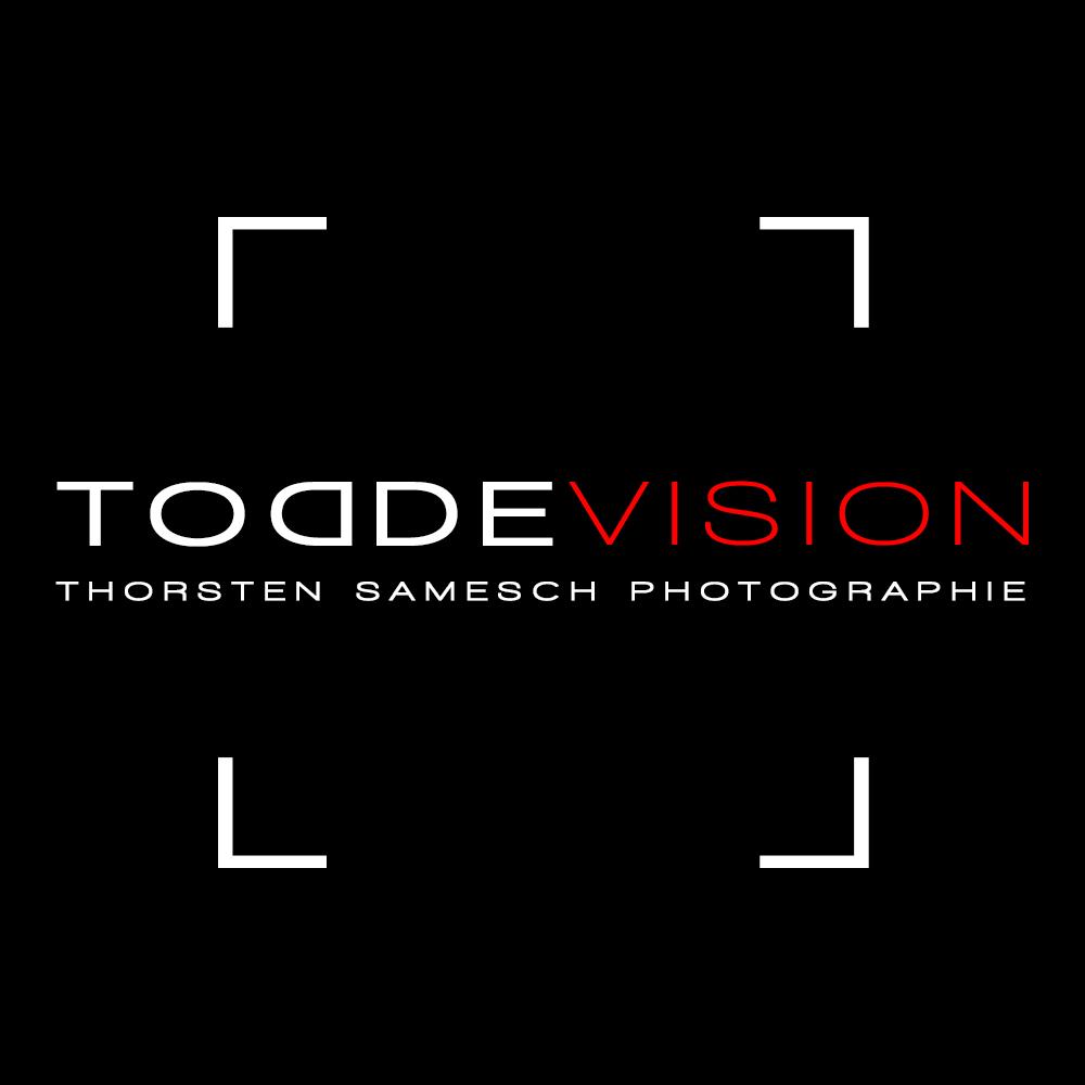 LOGO_Quadrat_ToddeVision